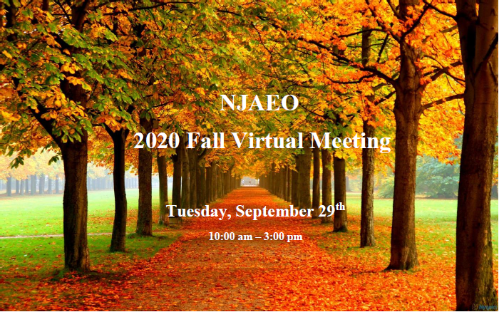 2020 NJAEO Fall Virtual Meeting